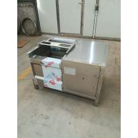 Quality Water Blast and Power Bubble Vegetable Washing Machine, Vegetable Washer for sale