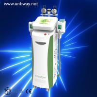 China cryotherapy belly fat loss machine wholesale