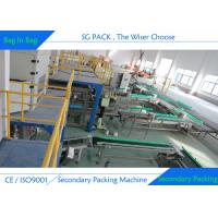 SS304 Stainless Steel Fully Automatic Packing Machine Small Bag Into Big Bag