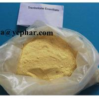 Buy cheap high purity Anabolic Steroids Parabolan Trenbolone Enanthate for Muscle Growth from wholesalers