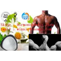 White or white crystalline endogenous steroid hormone powder Androsterone for muscle building