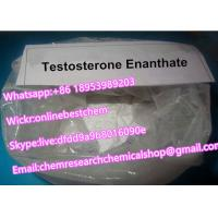 China Testosterone Enanthate Steroid Powder Anabolic Steroid Hormone Powder Testosterone Enanthate for Bodybuilding wholesale