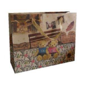 China Paper Bag Gift Bag (HH 0099) wholesale