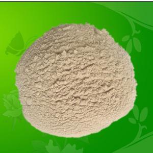 China Probiotics Bacillus Licheniformis for Feed Additives wholesale
