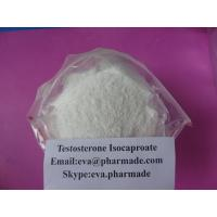 China Buy Testosterone Isocaproate Steroid Powder test isocaptoate Buy Test Enanthate wholesale