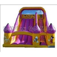China Big Water Slide Inflatable (ZY-31079) wholesale