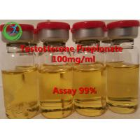 China 99% Assay Testosterone Propionate/ Injectable Testosterone propionate 100mg/ml wholesale