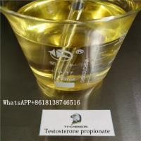 China Legal Injectable Steroids Testosterone propionate Semi-finished oil USP36 wholesale