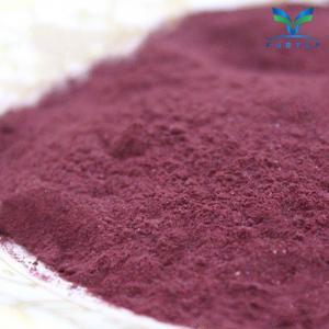 China Mulberry Powder wholesale