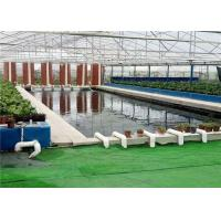 China Plastic Film Hydroponic Greenhouse Strong Ventilation Ability Convenient To Use wholesale