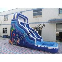 China Cartoon Nemo Theme Large Toys Inflatable Water Slide with Swimming Pool on sale