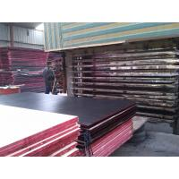 China Eco-friendly Shuttering Concrete Black Film Faced Plywood , Film Faced Plywood With Wbp Glue wholesale