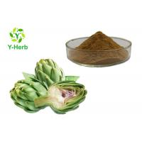China Bulk Organic Artichoke Herbal Extract Powder Cynara Scolymus L. Leaf P.E. 2.5% 5% on sale