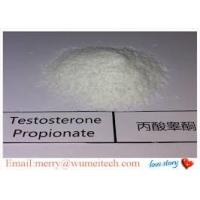 China Pharmaceutical Testosterone Propionate Powder For Body Building Raw Steroid Powders wholesale