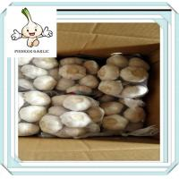China China Agriculture Products Red Garlic Natural Vegetable Wholesale China Garlic In Bulb on sale
