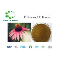 China Herb Powder Echinacea Extract CAS 70831 56 0 High Purity Powder wholesale