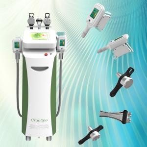 China Professional body slimming weight loss fat reduce cryolipolysis machine wholesale