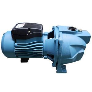 China JET-100L IP54 1HP 0.75KW Self Priming Water Pump wholesale