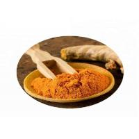 China Natural Plant Extract Turmeric Curcumin Powder Food Grade Yellowish Orange Apperance wholesale