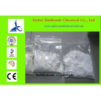 Pharmaceutical Material Synthetic Steroid Hormones Boldenone Undecylenate 106505