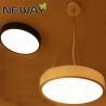 China Modern Acrylic ring pendant led light for home, Modern decor Round shape pendant led light wholesale