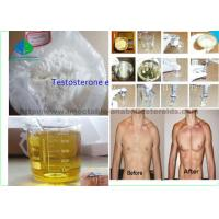 China Male Enhancement Drugs Testosterone Enanthate Primoteston 99% Purity For Muscle Mass wholesale