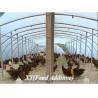 China Attapulgite feed additive wholesale