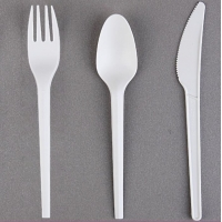 China FDA 6 inch 6.5 inch 7 inch Biodegradable Cutlery Set CPLA wholesale
