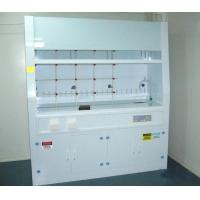 China Stainles Steel Laboratory Fume Hood , Safe Chemical Fume Hood wholesale