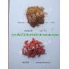 China Wolfberry(Goji Berry) Extract,  polysaccharide 40%, regulates immune system,Schisandra Extract,Schisandrins 2%,5%,9% wholesale