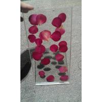 China Tempered Laminated Decorative Glass Partition For Office With Rose Real Plant on sale