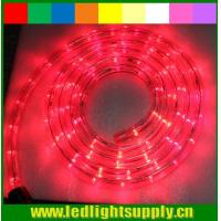 China outdoor christmas rope light 12/24v 1/2