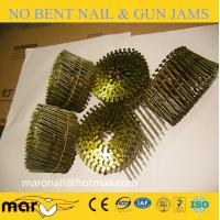 China Galvanized roofing coil nail(factory) with screw shank on sale