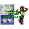 China Healthy Body Anticancer Drug Tamoxifen Citrate Nolvadex CAS no. 54965-24-1 wholesale