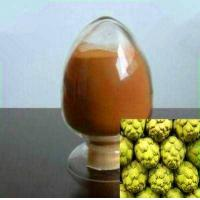 China Artichoke Extract /Artichoke extract powder/plant exteract /botanical extract on sale