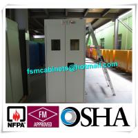 China Fire Resistance Gas Cylinder Storage Cabinet , Gas Detector Industrial Safety Cabinet wholesale