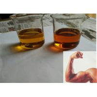 China Top Quality Injection Testosterone Propionate Test P 100mg/ml For Men 57-85-2 wholesale