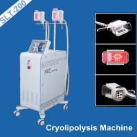 China Vaccum Coolsculpting Fat Freezing Equipment / Cryolipolysis Weight Loss Machine wholesale