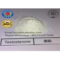 China 58-22-0 Muscle Body Building Testosterone Steroids Testosterone Base Powder wholesale