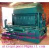 China egg tray making machine/egg tray thermoforming machine wholesale