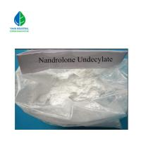 China Raw Steroid Hormone Powder Nandrolone Undecylate Muscle Building Supplement wholesale