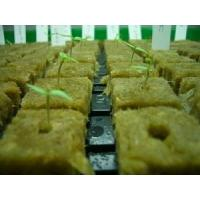 China Hydroponic Rockwool Grow Cubes  wholesale