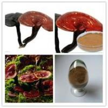 Quality Reishi Mushroom Extract, 링 국의 버섯 추출물 분말, Chinese manufacturer supply, Polysaccha for sale