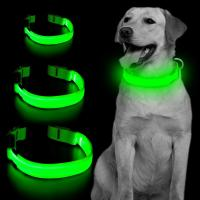 China High Visibility Rechargeable Light Up Dog Collar wholesale