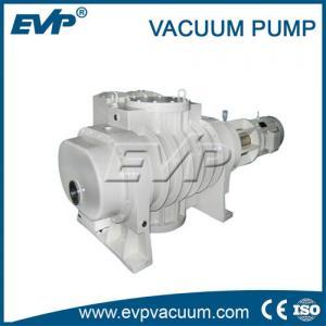 China Large capacity roots blower vacuum pump, vacuum lobe pump for selling on sale