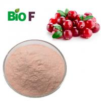 China Water Solube Fruit Extract Powder , Cranberry Extract Powder Proanthocyanidin For Health Care wholesale