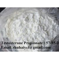 China High purity Testosterone Propionate Test P CAS 57-85-2 Raw Steroid Hormone Powder wholesale