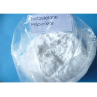 China Testosterone Propionate CAS 57-85-2 Raw Steroid Powders For Muscle Bodybuilding wholesale