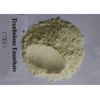 China Trenbolone Enanthate CAS 10161-33-8 High Purity Injectable Anabolic Steroids wholesale