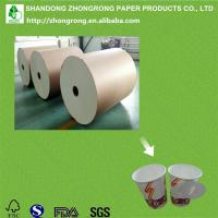 China virgin wood pulp 170+18gsm raw materials for paper cups wholesale